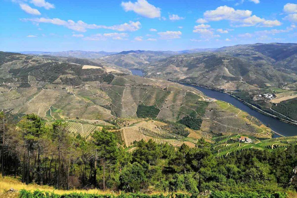 Durch grüne Felde und Natur in Portugal fahren.