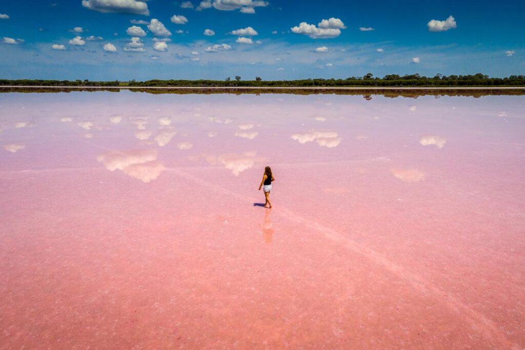 Pink Seen in Victoria, Australien