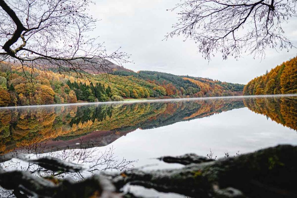 Autumnal trees line a lake in one of the best rural places to visit in the UK, the Peak District.